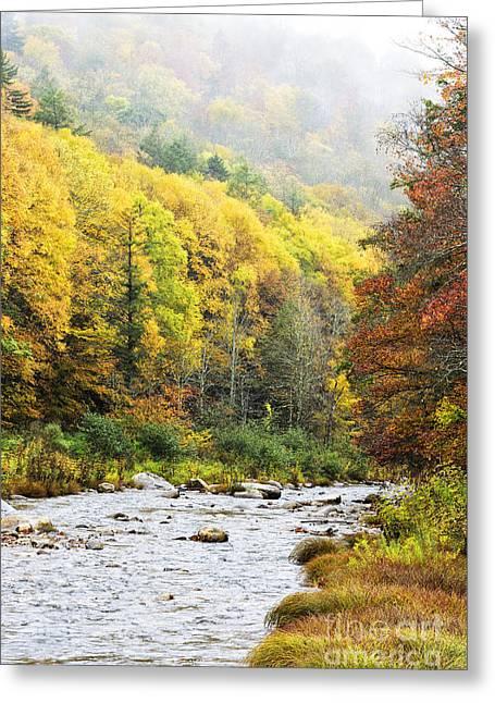 Williams River Autumn Greeting Card