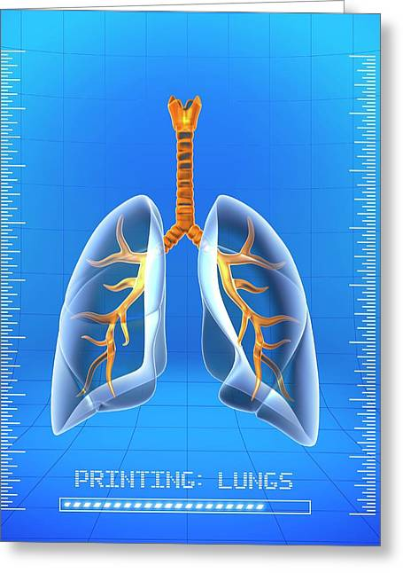 3d Printing Of Human Lungs Greeting Card by Alfred Pasieka