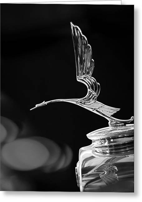 1929 Cadillac Hood Ornament Greeting Card by Jill Reger