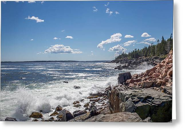 Greeting Card featuring the photograph Acadia National Park by Trace Kittrell