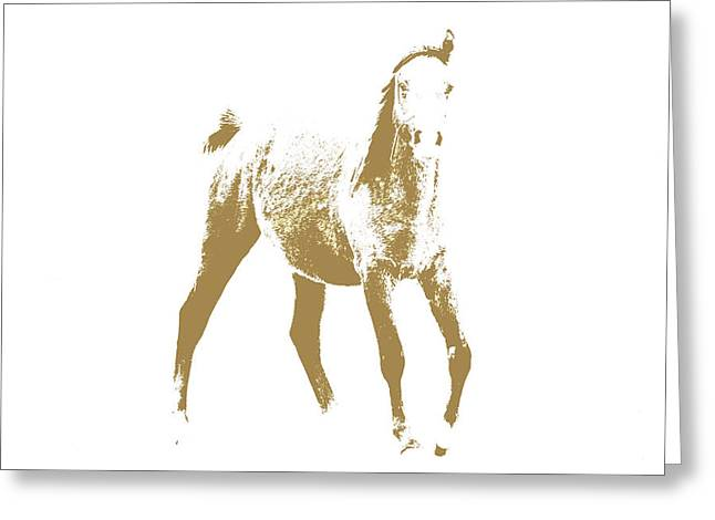 Arabian Horse Greeting Card by Tommytechno Sweden