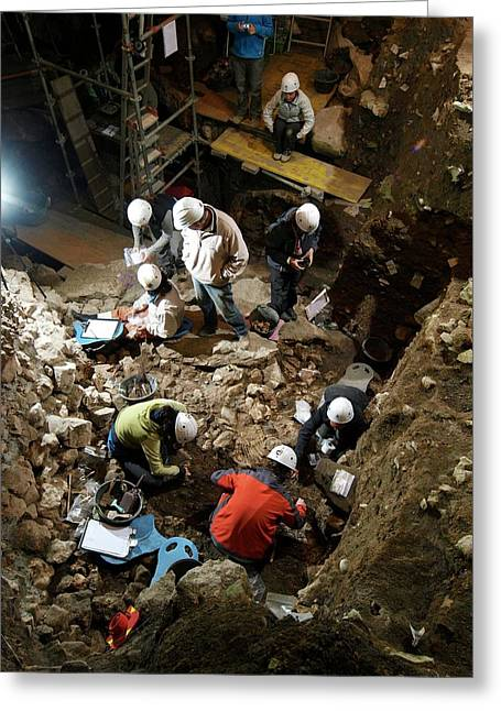 Atapuerca Fossil Excavation Greeting Card