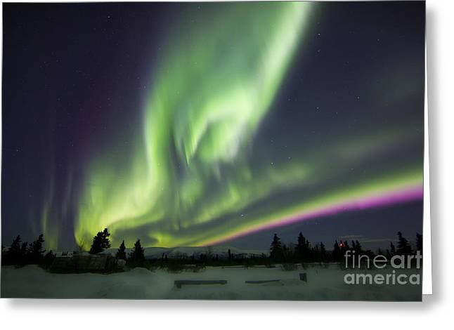 Aurora Borealis Over A Ranch Greeting Card by Joseph Bradley