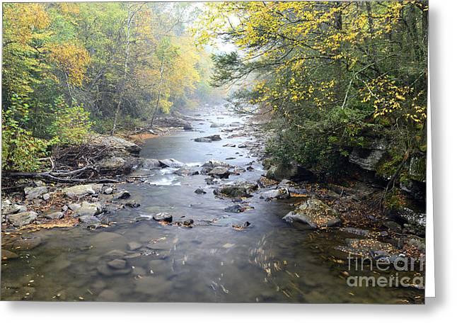 Back Fork Of Elk River Greeting Card