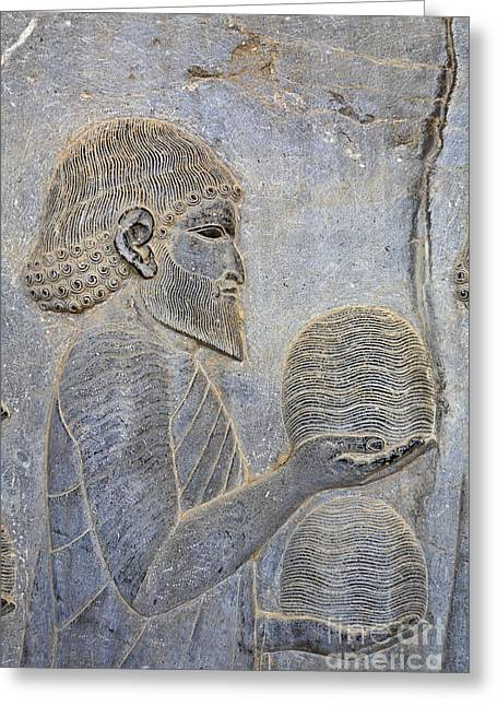 Bas Relief At Persepolis In Iran Greeting Card by Robert Preston
