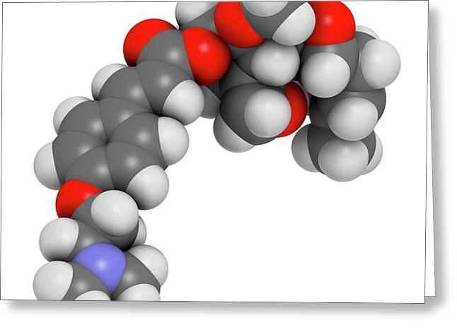 Beloranib Obesity Drug Molecule Greeting Card by Molekuul