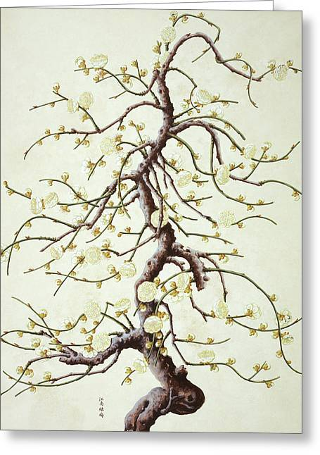 Botanical Illustration Greeting Card by Natural History Museum, London/science Photo Library
