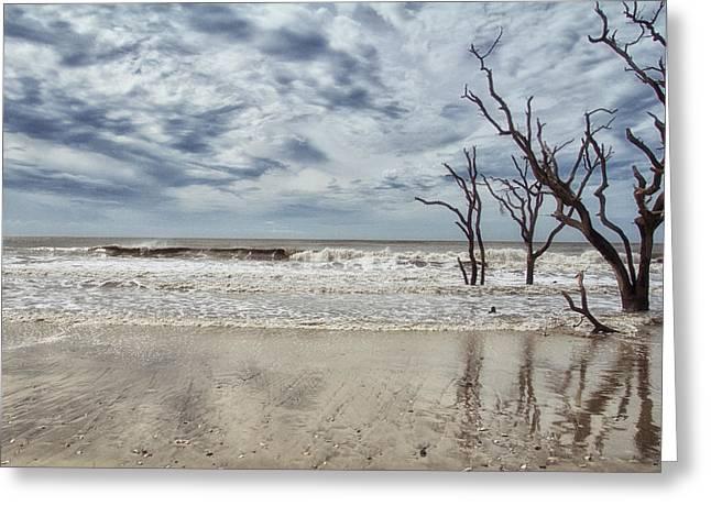 Botany Bay Beach Greeting Card by Gestalt Imagery