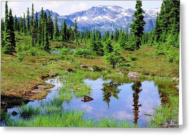 Canada, British Columbia Greeting Card by Jaynes Gallery