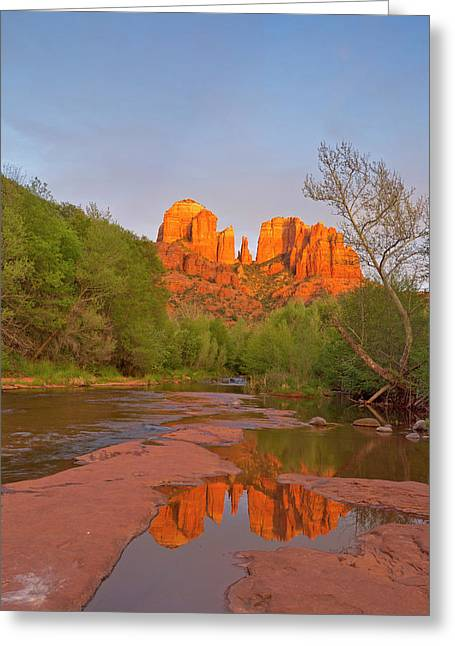 Cathedral Rocks Reflect Into Oak Creek Greeting Card by Chuck Haney