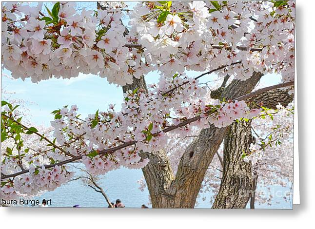 4 Cherry Blossom 2014  Greeting Card