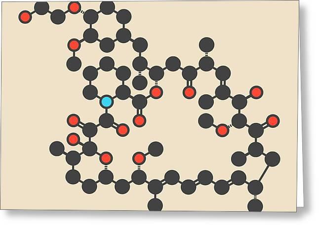 Everolimus Immunosuppressant Molecule Greeting Card by Molekuul