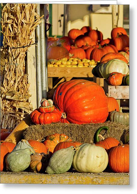 Farmer's Market, Autumn In Luling, Texas Greeting Card by Larry Ditto