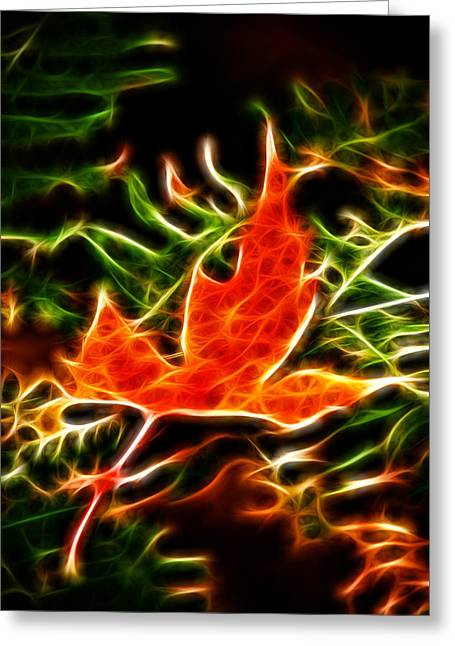 Fractal Maple Leaf Greeting Card by Andre Faubert