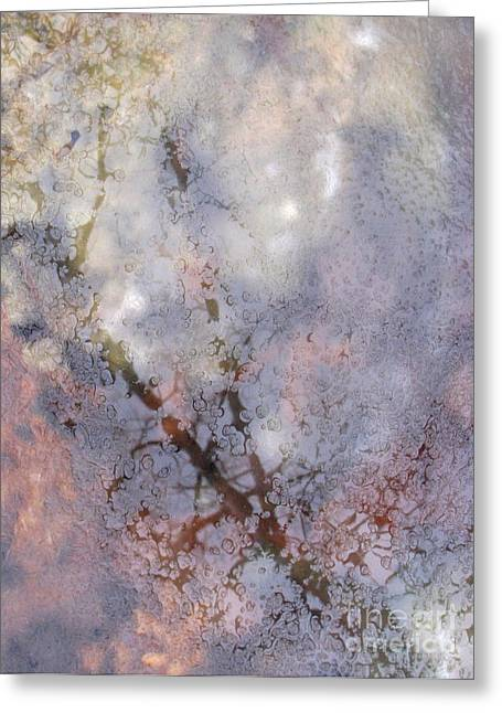Ice Tree Greeting Card by Fred  Sheridan