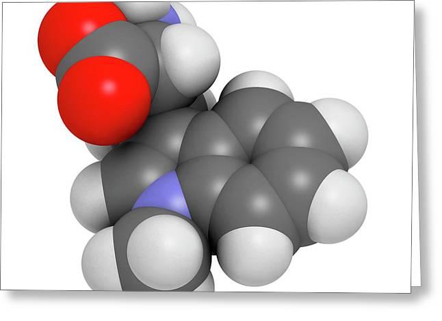 Indoximod Cancer Drug Molecule Greeting Card by Molekuul