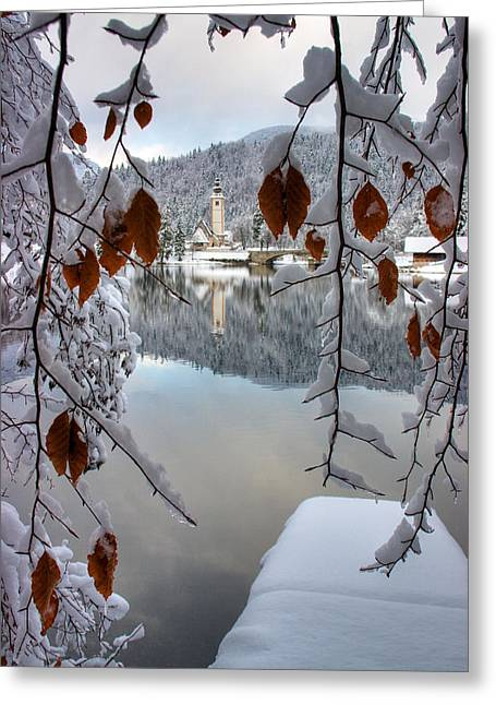 Lake Bohinj In Winter Greeting Card