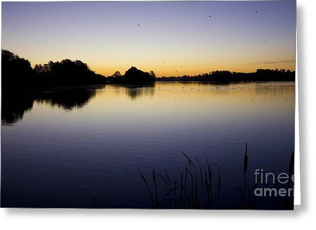 Lake Sunrise Greeting Card by Darren Burroughs
