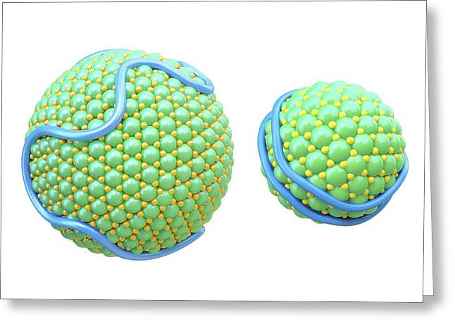 Lipoproteins Greeting Card by Maurizio De Angelis