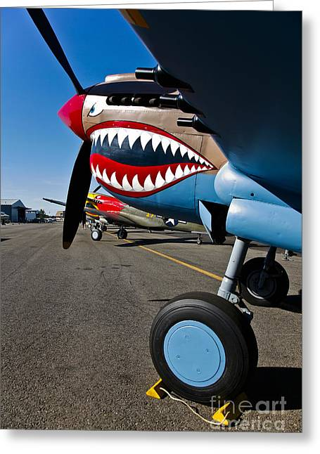 Nose Art On A Curtiss P-40e Warhawk Greeting Card