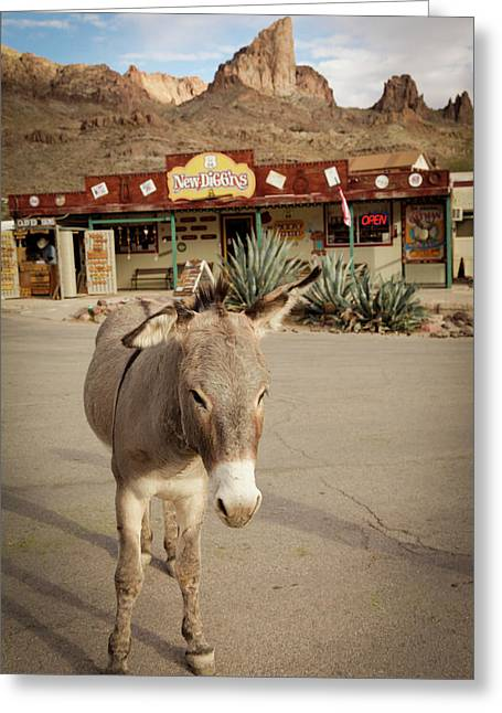 Oatman, Arizona, United States Greeting Card by Julien Mcroberts