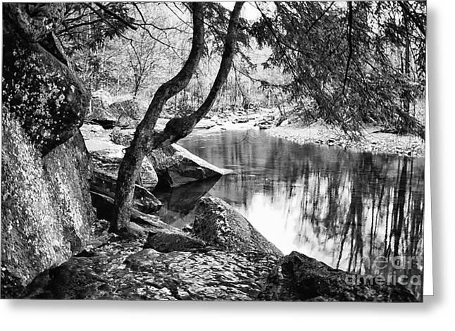 Otter Creek Wilderness Greeting Card by Thomas R Fletcher