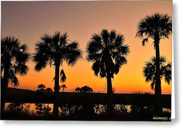 Greeting Card featuring the photograph 4 Palms In After Glow by Richard Zentner