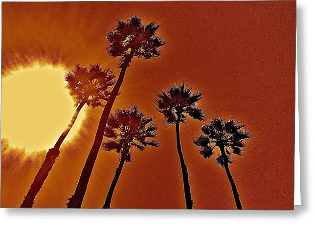 4 Palms N Sun Greeting Card