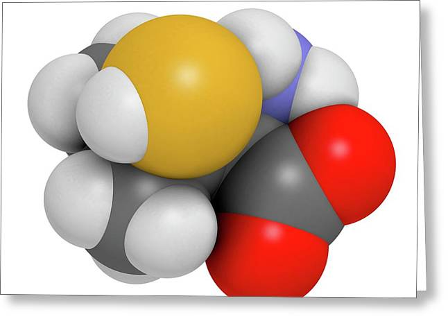 Penicillamine Drug Molecule Greeting Card