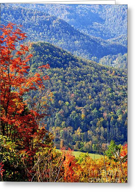 Point Mountain Overlook Greeting Card by Thomas R Fletcher