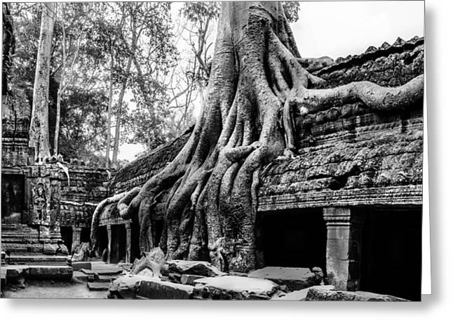 Ta Prohm Ruin Greeting Card by Julian Cook