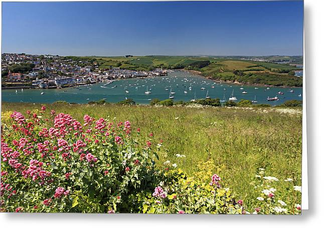 Salcombe  Greeting Card by Ollie Taylor