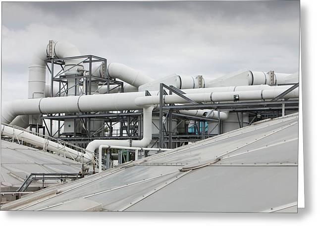 Sewage Odour Suppressant Plant Greeting Card