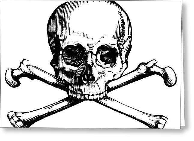 Skull And Crossbones Greeting Card by Granger