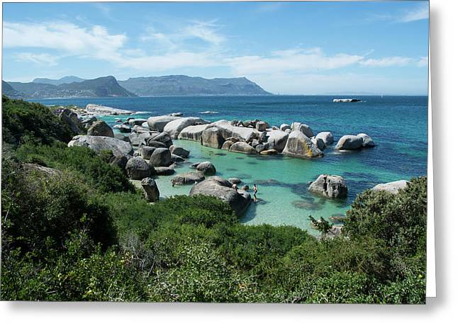 South Africa, Cape Town, Simon's Town Greeting Card