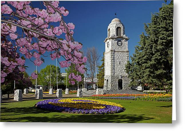Spring Blossom And Memorial Clock Greeting Card by David Wall