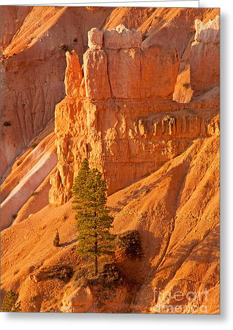 Sunrise At Sunset Point Bryce Canyon National Park Greeting Card