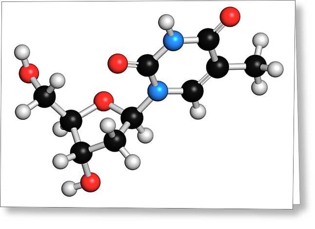 Thymidine Nucleoside Molecule Greeting Card by Molekuul