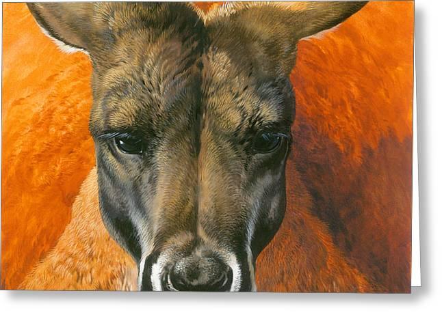 Kangaroo Portriat Greeting Card by John Francis