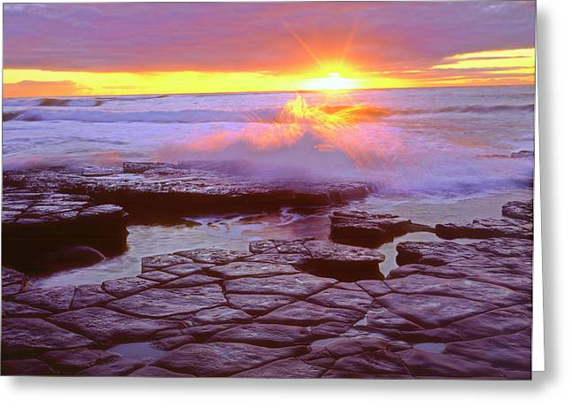 Usa, California, San Diego, Sunset Greeting Card by Jaynes Gallery