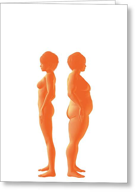 Weight Management Greeting Card by Carol & Mike Werner