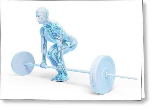Weight Training Posture Greeting Card by Sebastian Kaulitzki
