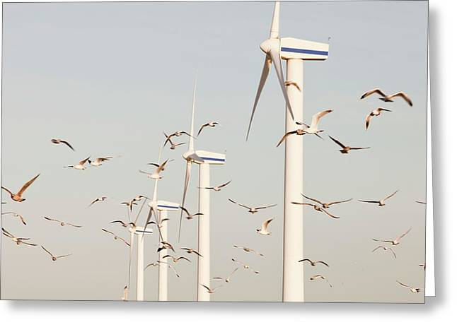 Wind Turbine In Workington Greeting Card