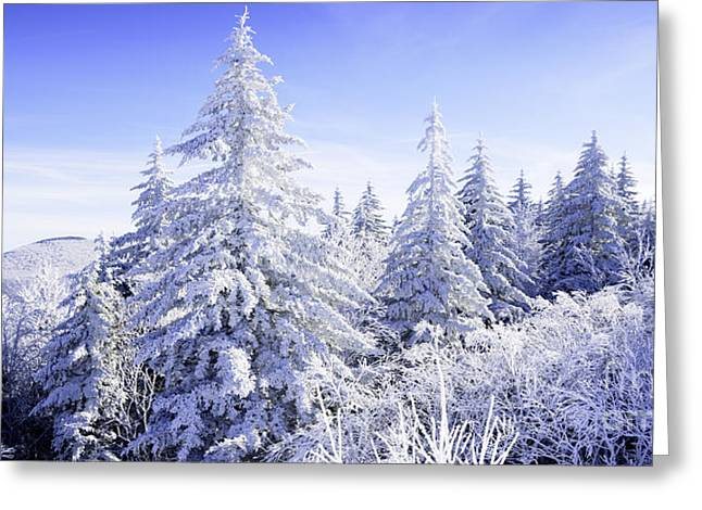 Winter Along The Highland Scenic Highway Greeting Card