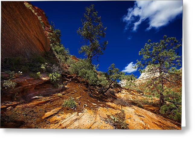 Zion National Park Utah Usa Greeting Card