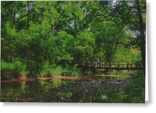 40 Mile Creek  Greeting Card by Dan  Copeland