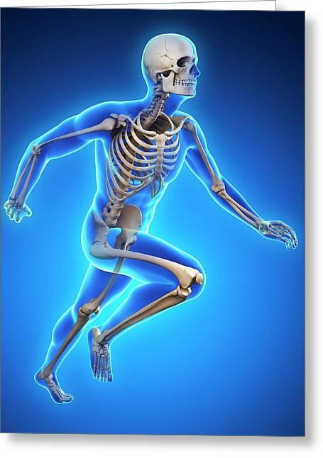 Skeletal System Of Runner Greeting Card