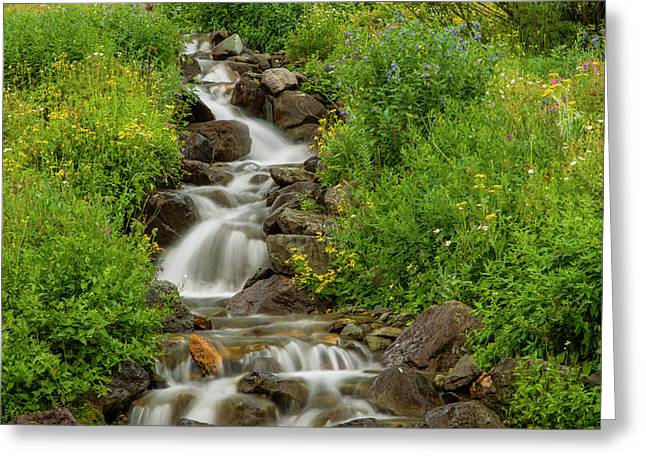 Usa, Colorado, San Juan Mountains Greeting Card by Jaynes Gallery