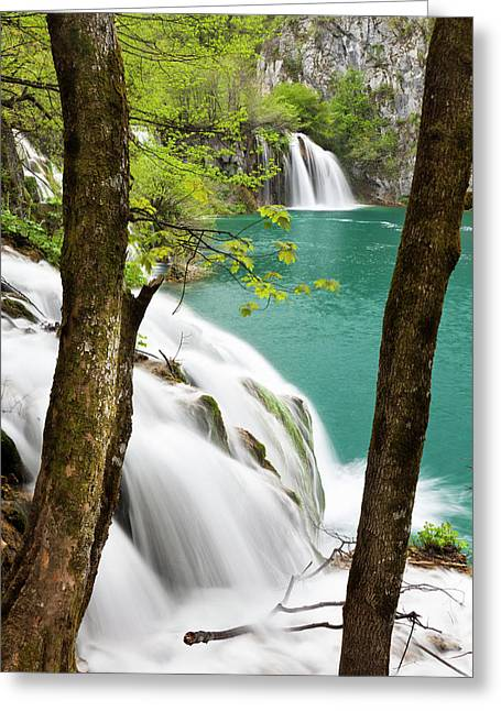 The Plitvice Lakes In The National Park Greeting Card by Martin Zwick