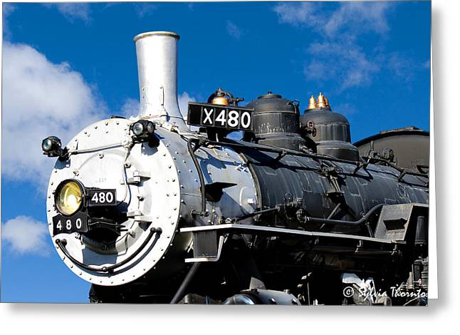 Greeting Card featuring the photograph 480 Locomotive by Sylvia Thornton